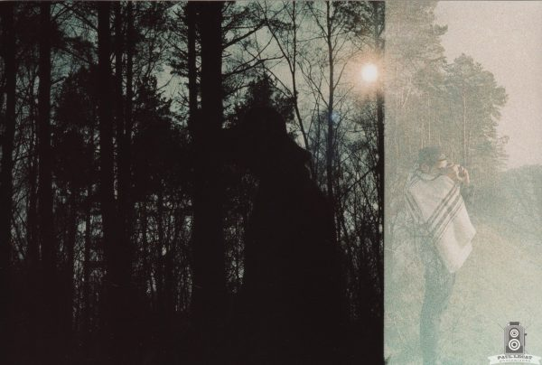 German Forest – analog color experimental photography